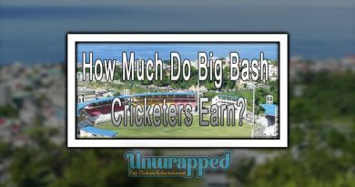 How Much Do Big Bash Cricketers Earn?