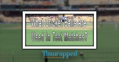 What Cricket Balls Are Used In Test Matches?