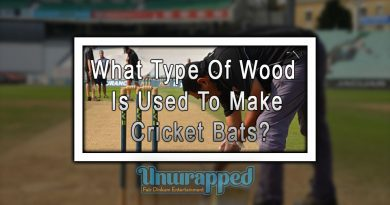 What Type Of Wood Is Used To Make Cricket Bats?