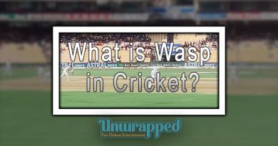 What is Wasp in Cricket?