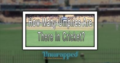How Many Umpires Are There in Cricket?