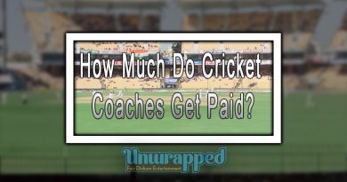 How Much Do Cricket Coaches Get Paid?