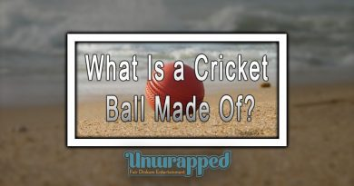What Is a Cricket Ball Made Of?