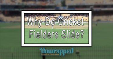 Why Do Cricket Fielders Slide?
