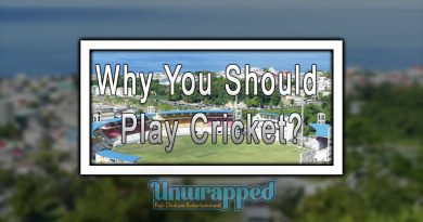 Why You Should Play Cricket?