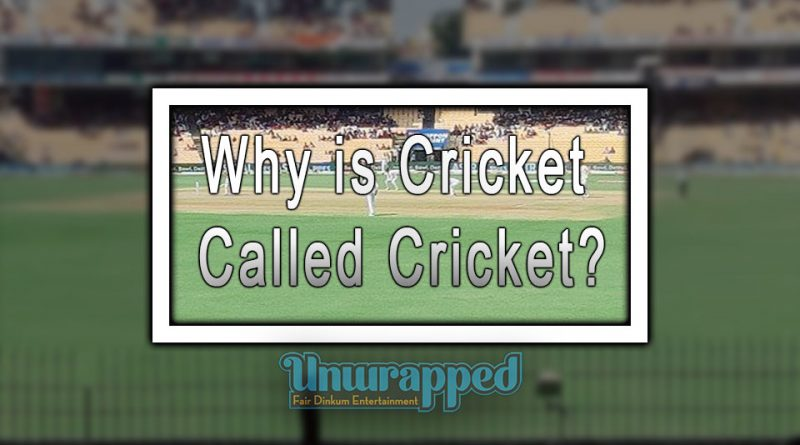 Why is Cricket called Cricket?