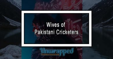 Wives of Pakistani Cricketers