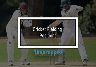 Cricket Fielding Positions